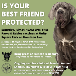 Trenton Animal Shelter to Host Free Rabies and Parvo Vaccine Clinic for City Dogs