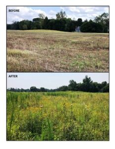 Proposal for Referendum on Open Space Trust Fund Reallocation Receives Commissioners' OK