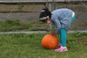 Trenton Residents Pick Their Own Free Produce at Harvest Festival
